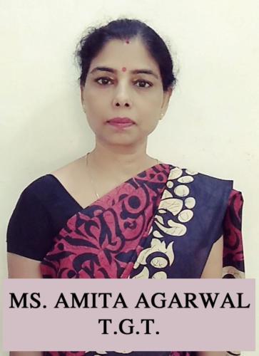 MS. AMITA AGARWAL